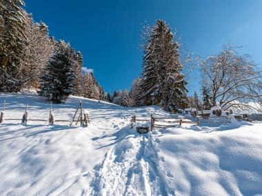 Winter im Biolandhaus